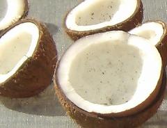 キングココナッツ